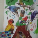 Ptasie-Radio