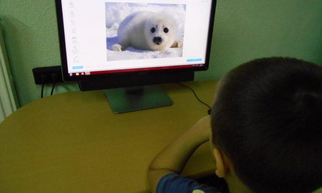 W tegoroczne ferie zimowe biblioteka wzbogaciła swoją ofertę o zajęcia z wykorzystaniem nowoczesnych technologii i Internetu. W ogólnodostępnych darmowych programach graficznych uczestnicy zajęć w bibliotece dziecięcej Filii nr 2 przy […]