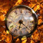 Uwaga Czytelnicy! od 2 do 13 listopada 2020 r. Filia nr 1 przy ul. Towarowej 20 czynna będzie w godzinach:10.00 – 18.00