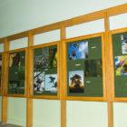 """Grupa Fotograficzna CO-ARTOorazPowiatowa i Miejska Biblioteka Publiczna miała przyjemność zaprosić na wystawę """"Niech w każdym lesie będą drzewa, niebo błękitne jak woda…"""" Wystawę można było zwiedzać w budynku Bibliotekiprzy ul. […]"""