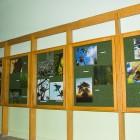 """Grupa Fotograficzna CO-ARTO oraz Powiatowa i Miejska Biblioteka Publiczna miała przyjemność zaprosić na wystawę """"Niech w każdym lesie będą drzewa, niebo błękitne jak woda…""""  Wystawę można było zwiedzać w […]"""